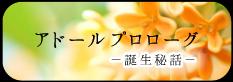 アドールプロローグ-誕生秘話-